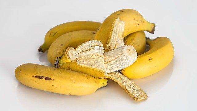 plátanos en una mesa para perros